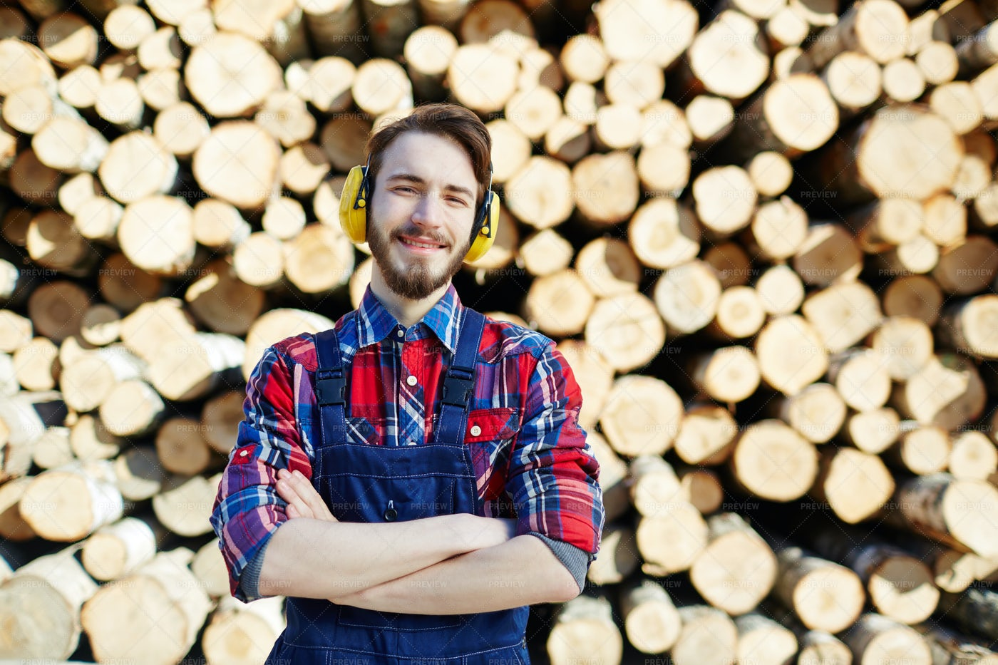 Tree Worker: Stock Photos