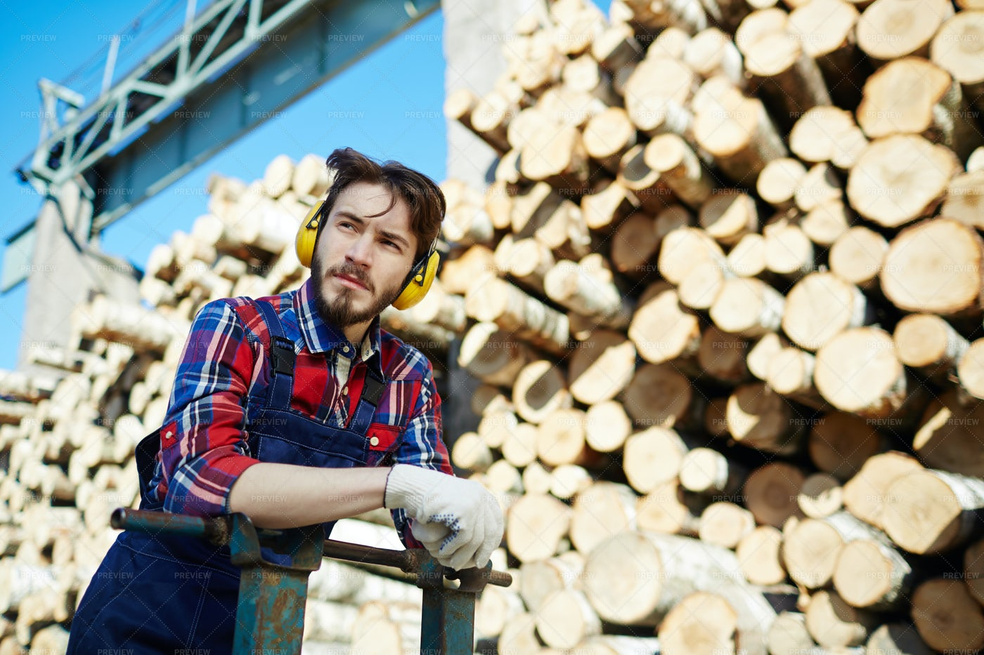 Lumber With Cart: Stock Photos