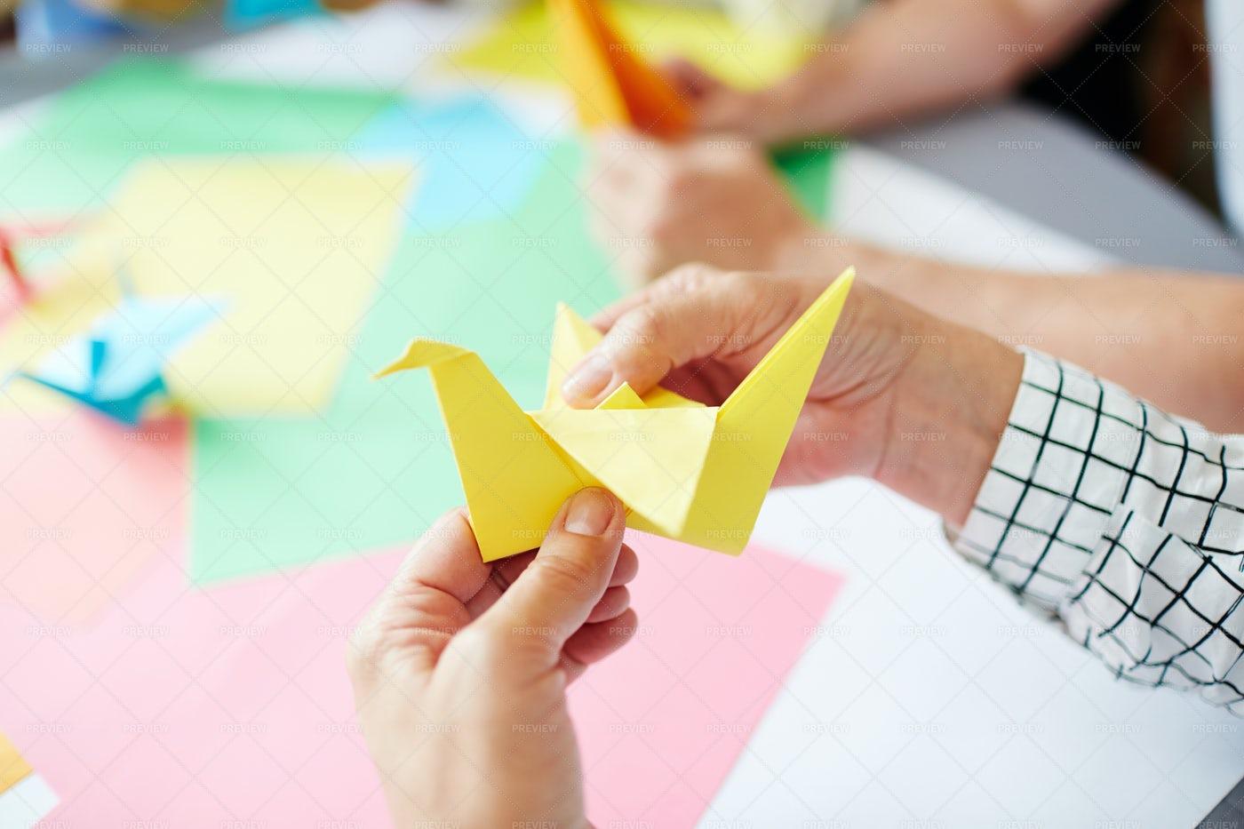 Making Paper Bird: Stock Photos