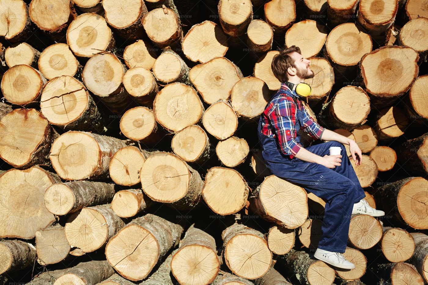 Restful Tree-worker: Stock Photos