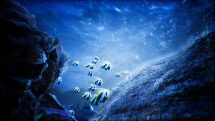 Under Water World 2: Stock Motion Graphics