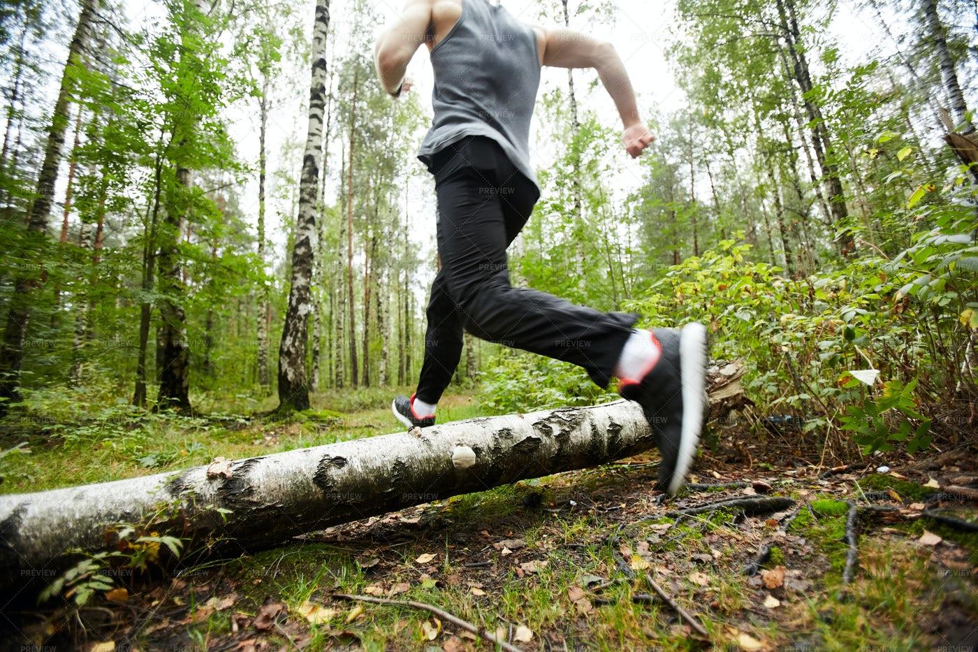 Running Over Birch Log: Stock Photos