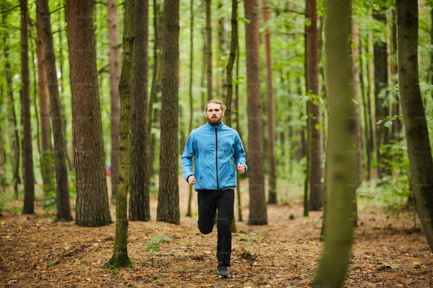 Running On Forest Path: Stock Photos