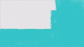 Paint Roll Transitions Vol 02: Motion Graphics