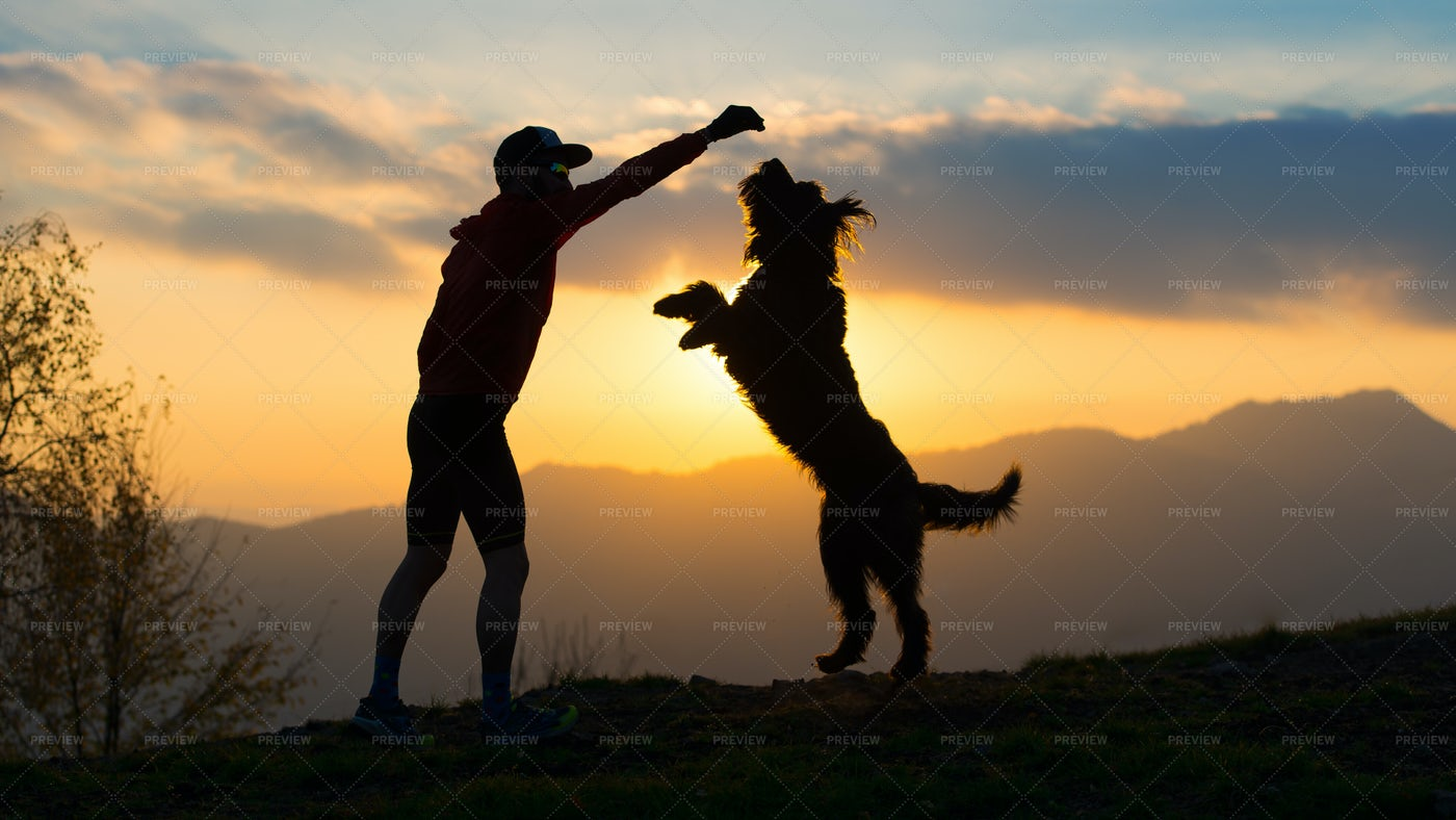Silhouette Of A Dog And A Man: Stock Photos