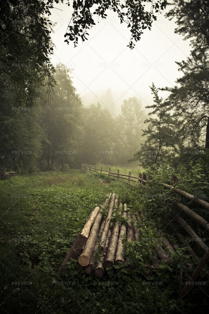 Pine Logs Beside A Fence: Stock Photos
