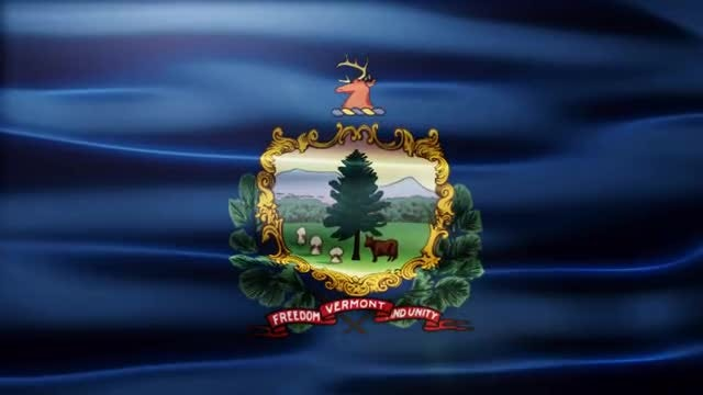 Vermont Flag: Stock Motion Graphics