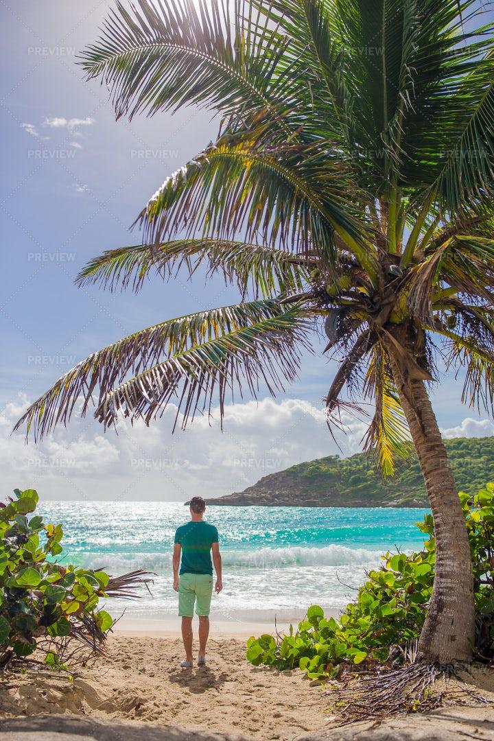 Man On Tropical Beach: Stock Photos