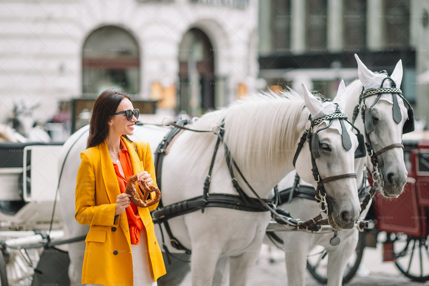 Beside The Horse Carriage: Stock Photos