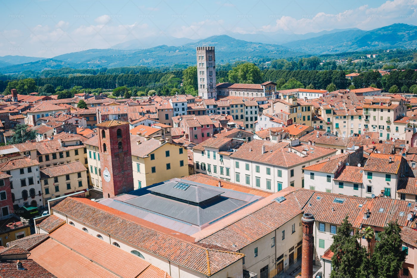 Rooftops Of Lucca: Stock Photos