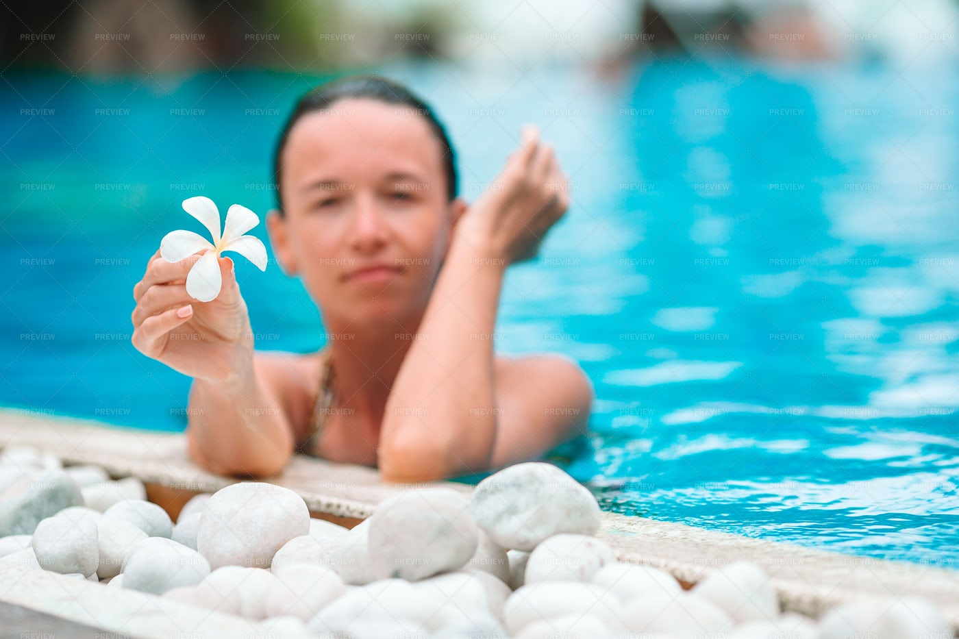 In A Pool Showing A Tropical Flower: Stock Photos