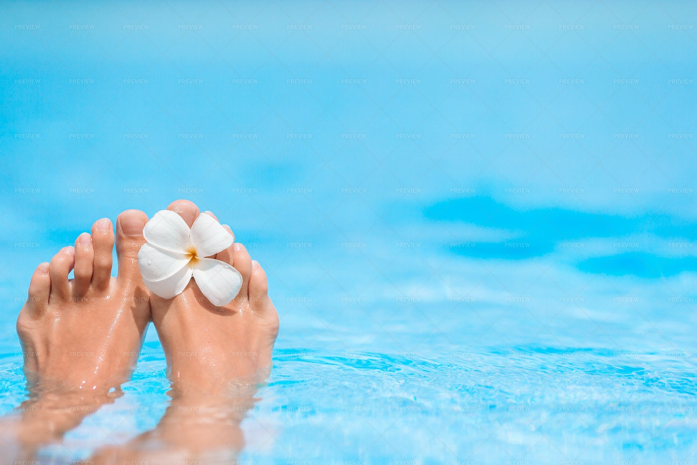 Feet In Blue Pool With Tropical Flower: Stock Photos