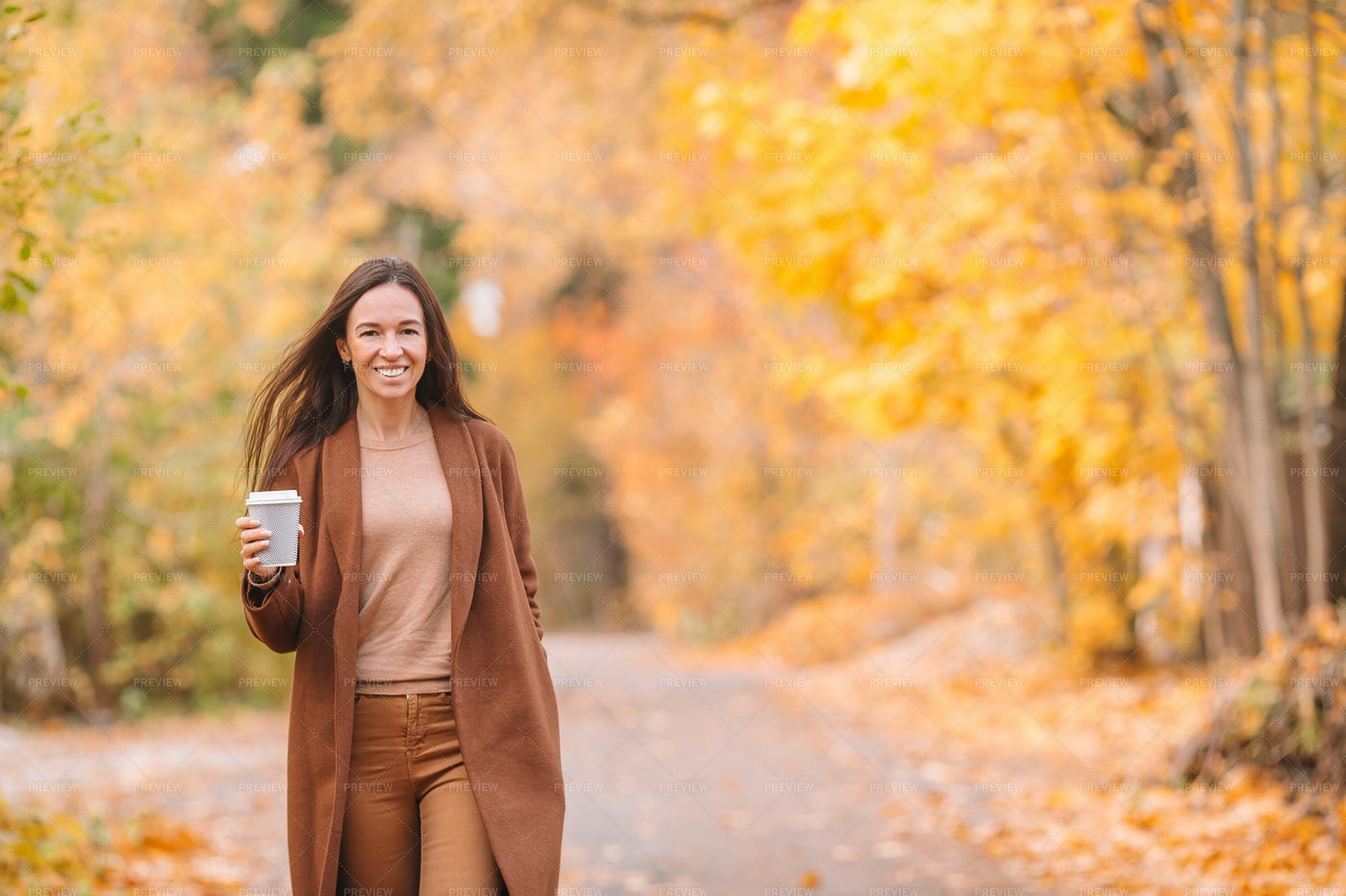 Seasonal Drink In Autumn: Stock Photos