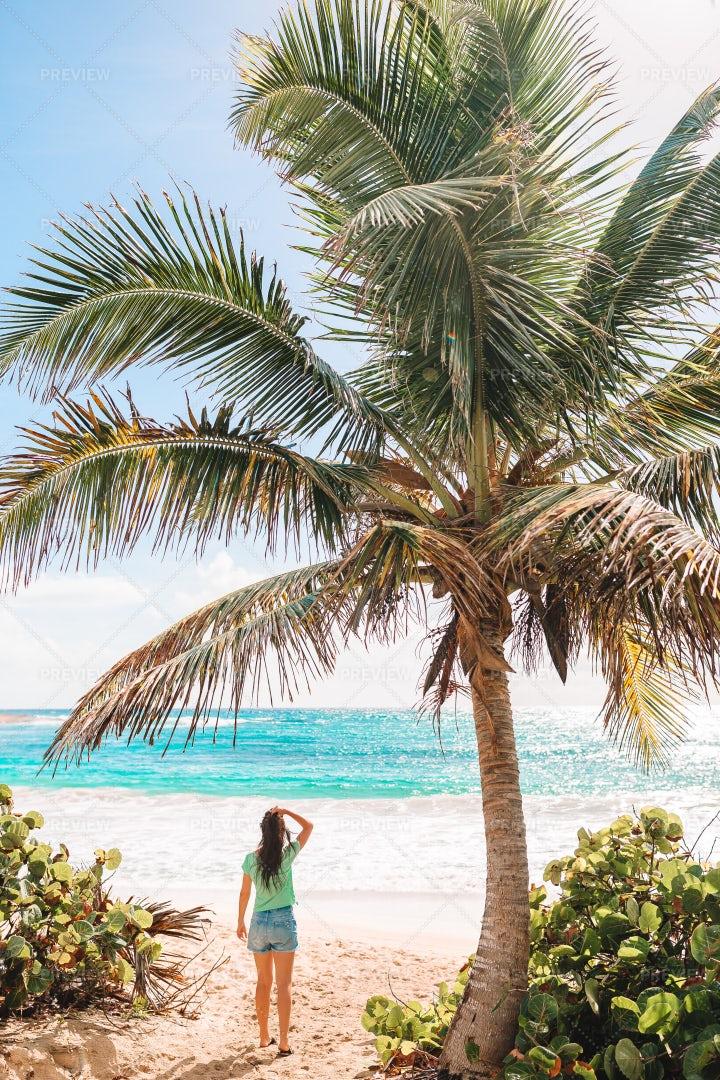 Woman Under Palm Tree: Stock Photos