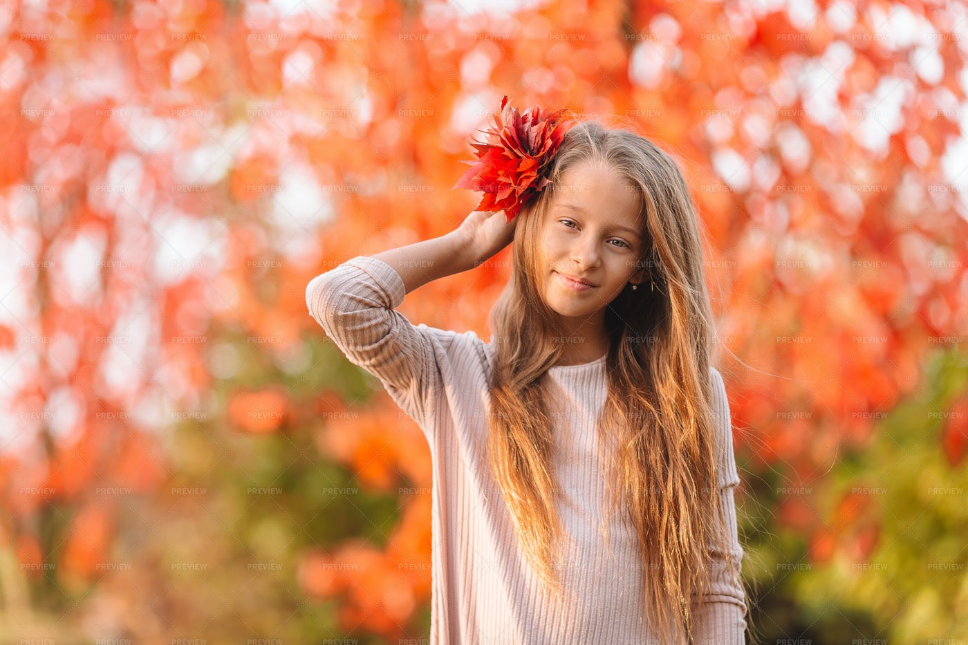 Red Leaves In Hair: Stock Photos