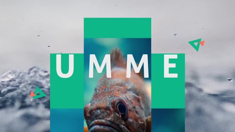 Summer Dynamic Opener: After Effects Templates