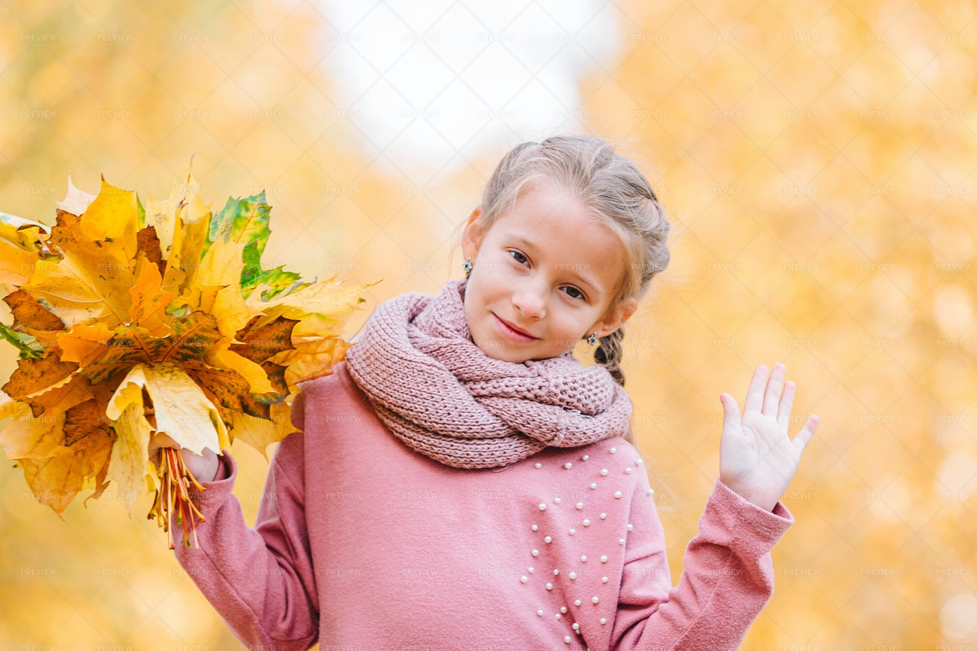 Girl With Dry Leaf Bouquet: Stock Photos