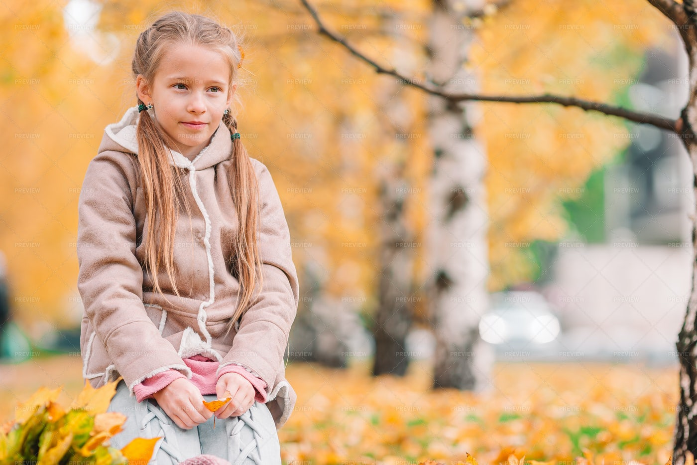 Litttle Girl In An Autumn Park: Stock Photos
