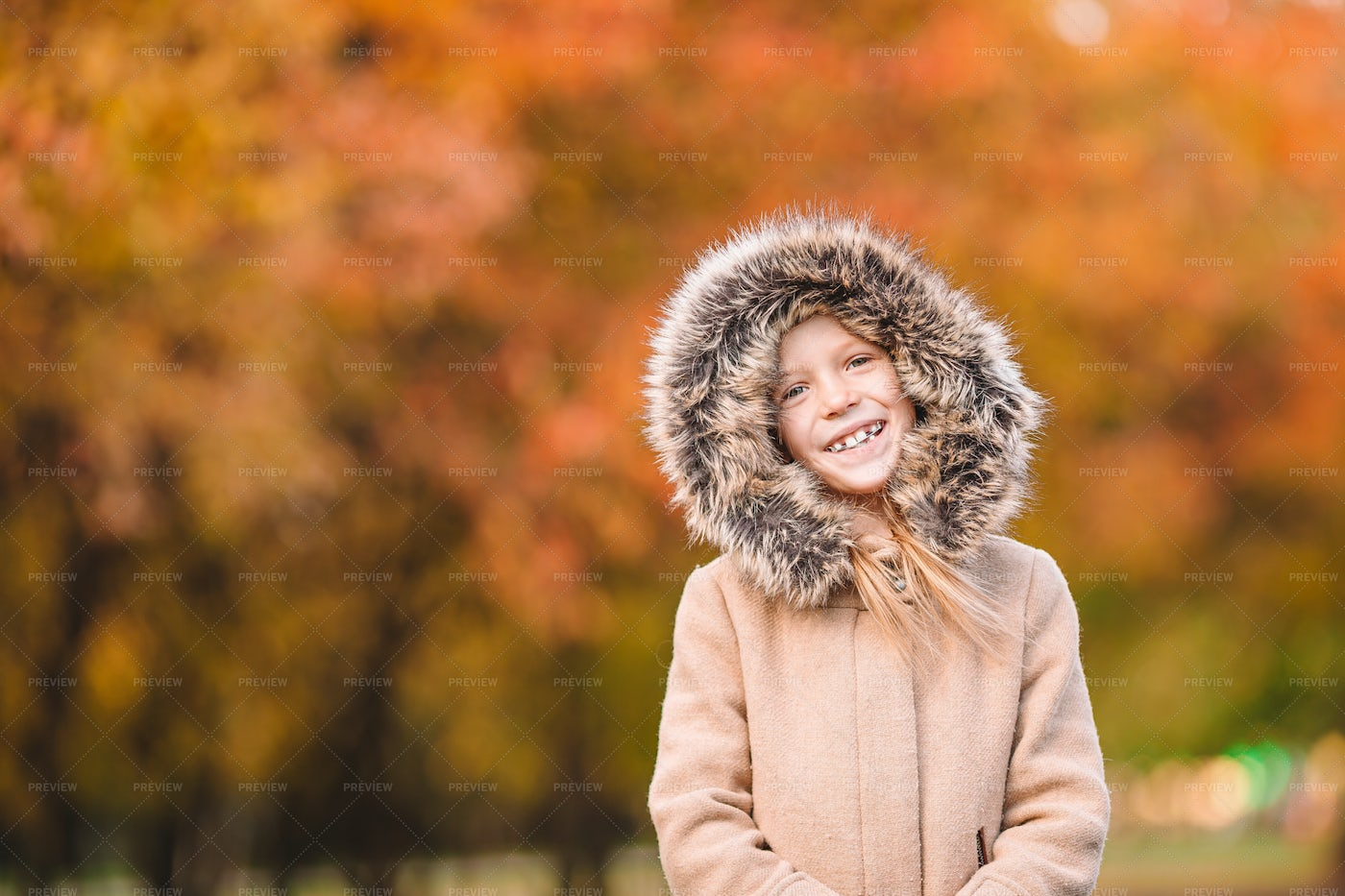 Girl In Autumn Forest: Stock Photos