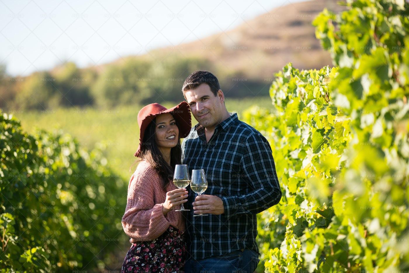 Toasting On A Green Vineyard: Stock Photos