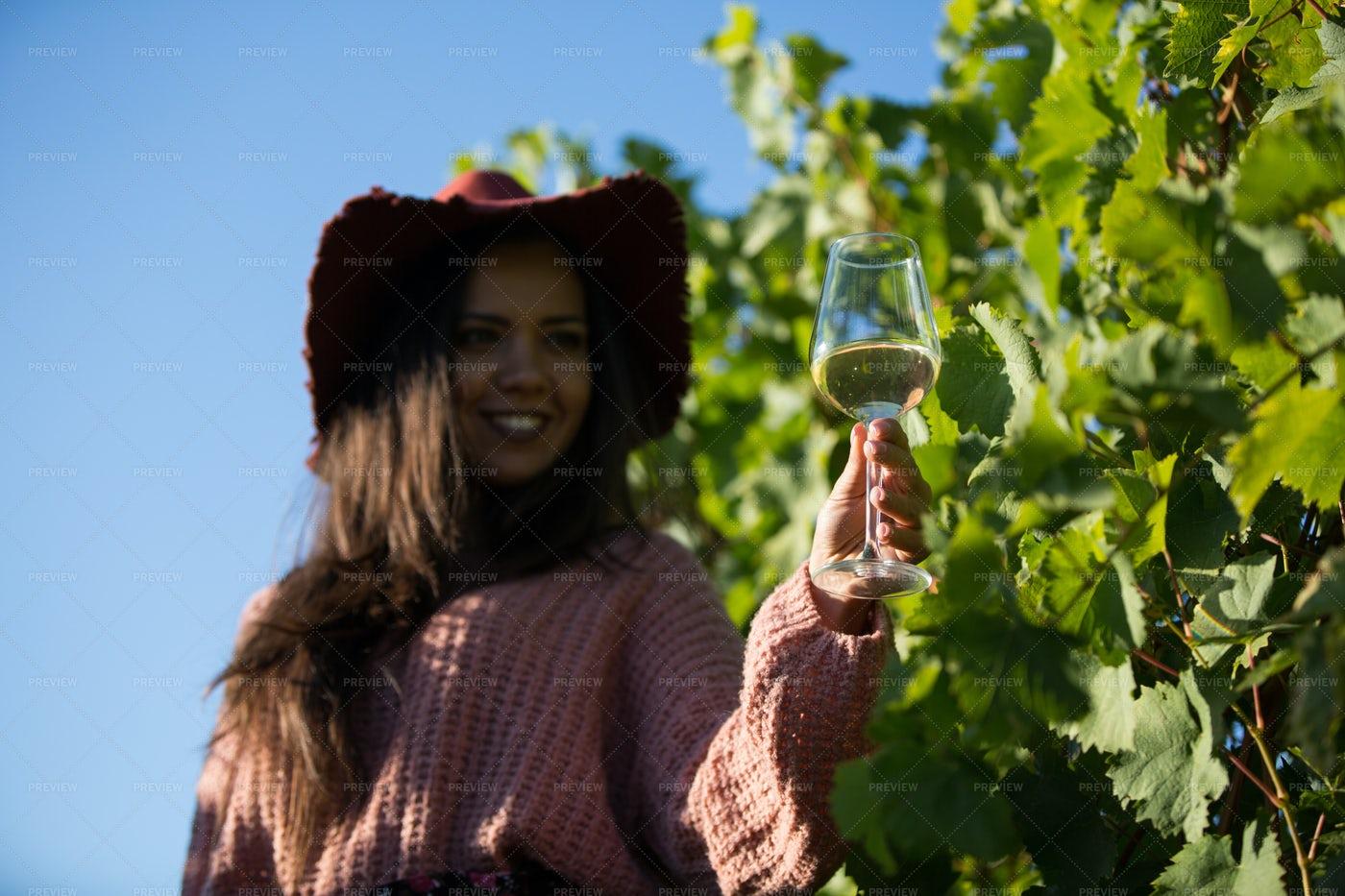 Tasting Winery's White Wine: Stock Photos