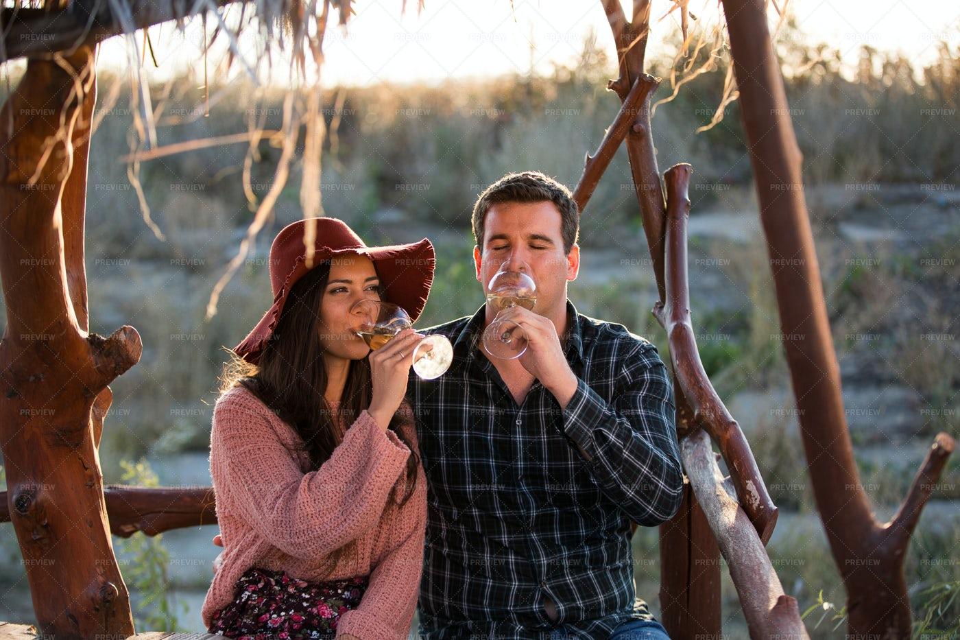 Couple Drinking Wine In Vineyard: Stock Photos
