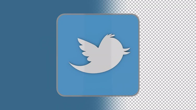 Twitter Logo: Motion Graphics