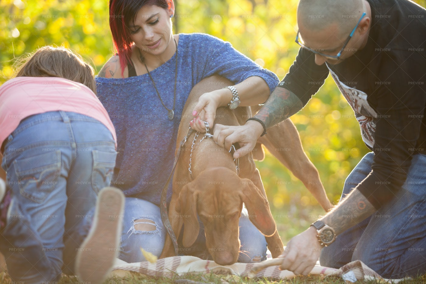 Family Playing With Their Dog: Stock Photos
