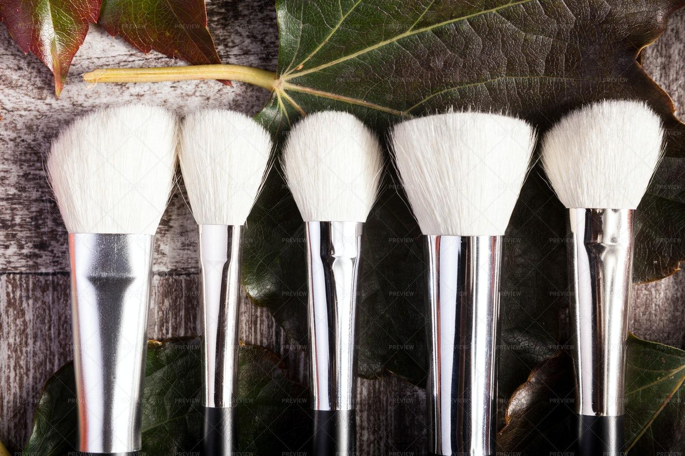 Professional Makeup Brushes: Stock Photos