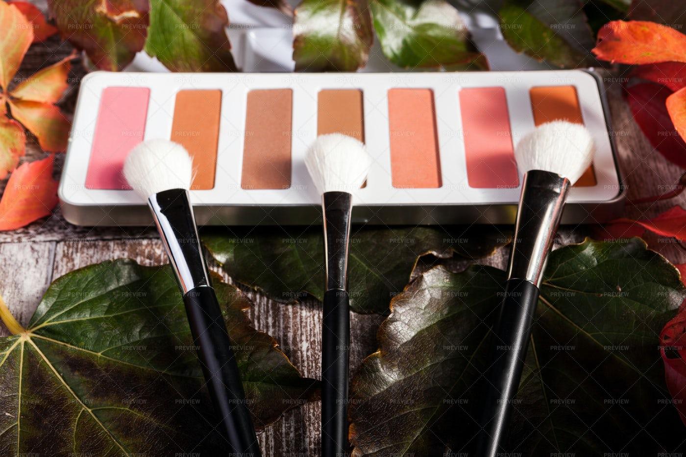 Eyeshadow Palette On Autumn Background: Stock Photos