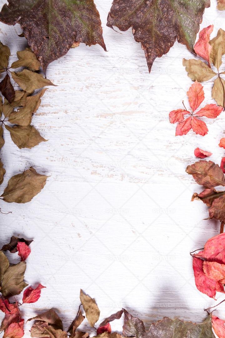 Autumn Frame Background: Stock Photos