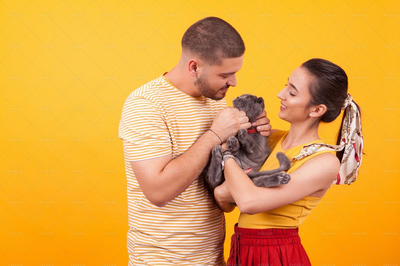 Couple Adopting Pet Cat: Stock Photos