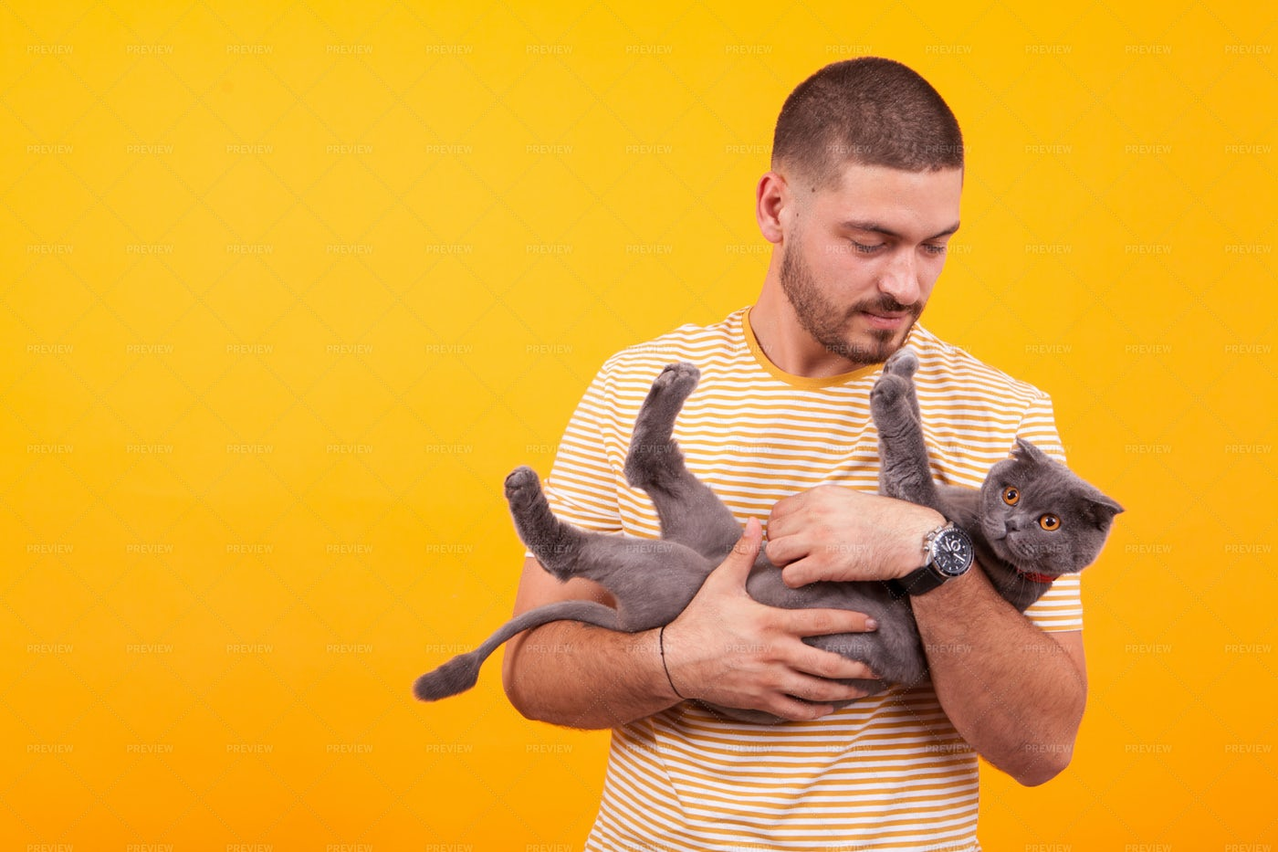 Man Cradling Cat: Stock Photos