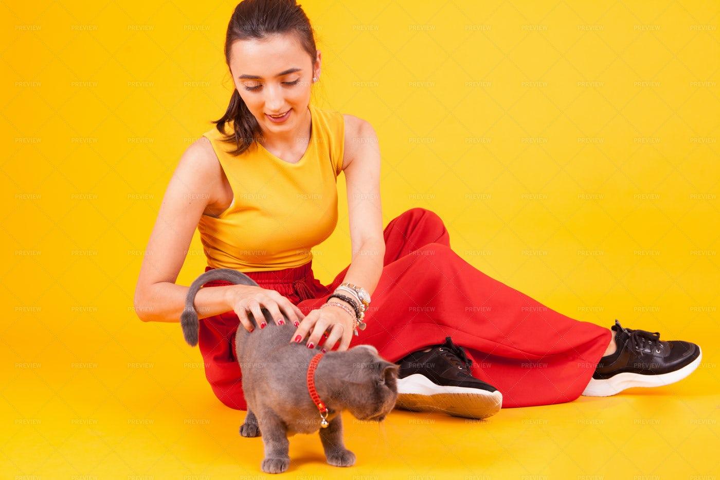 Girl Petting Cat: Stock Photos