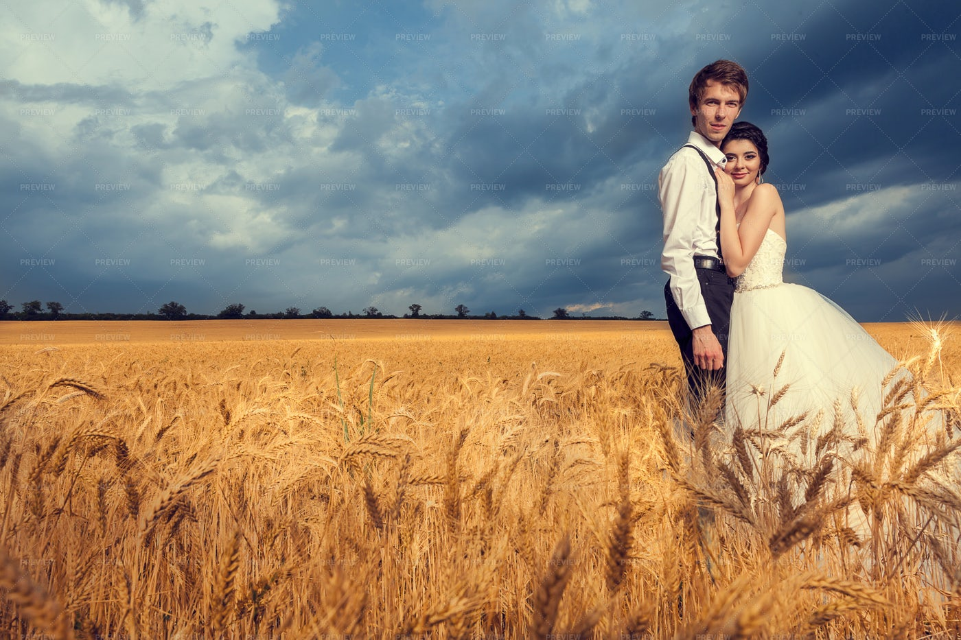 Newlyweds In Wheat Field: Stock Photos