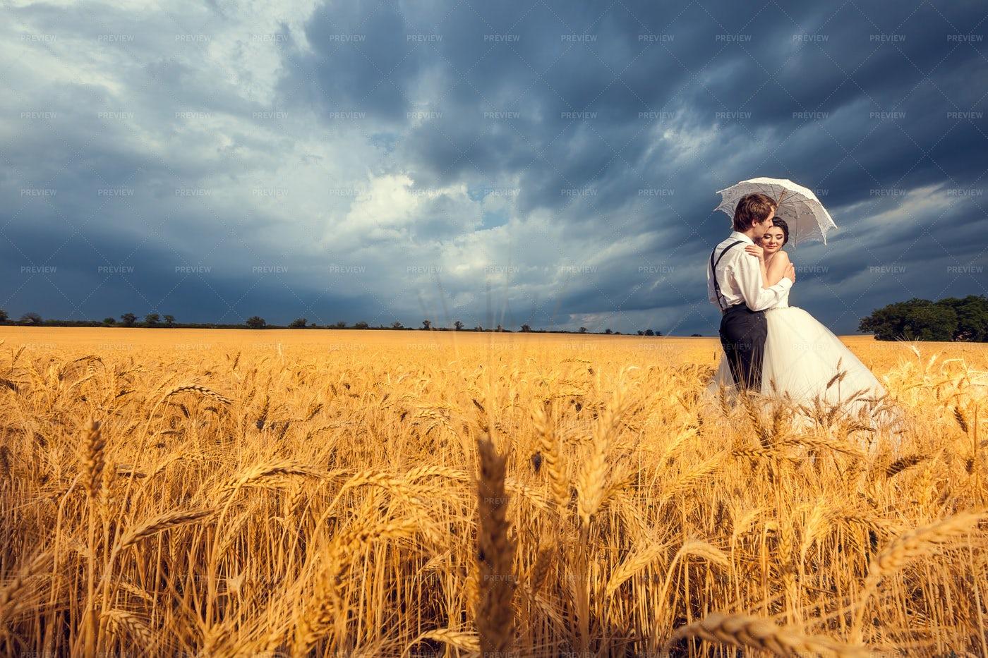 Wedding Photo In Magic Wheat Field: Stock Photos