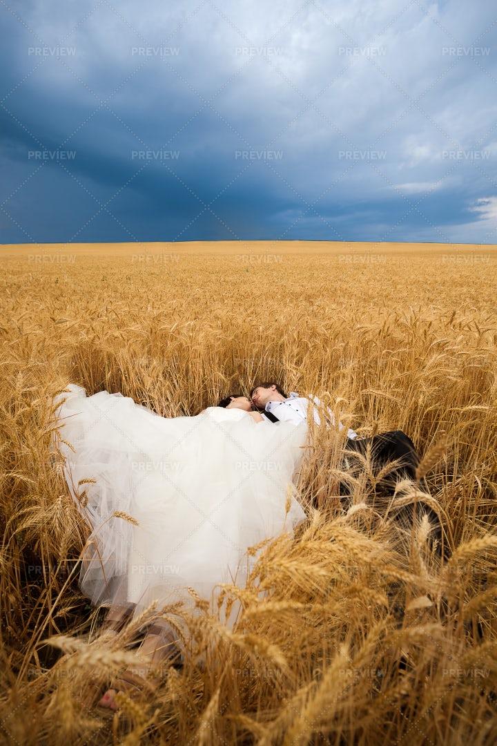 Newlyweds Lying In Wheat Field: Stock Photos