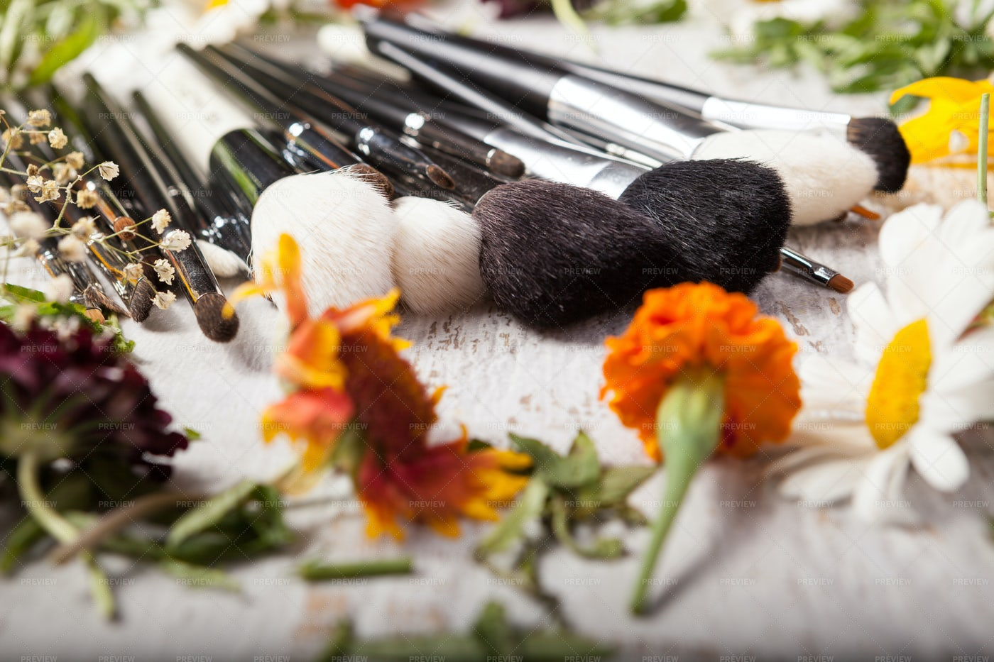 Blush Brushes And Wildflowers: Stock Photos