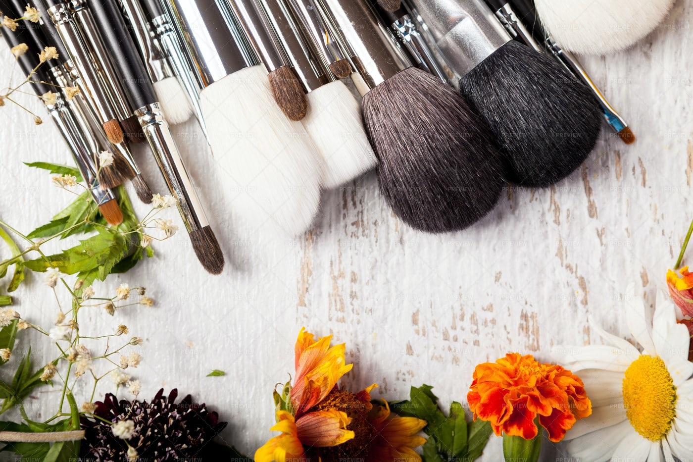 Makeup Brushes: Stock Photos