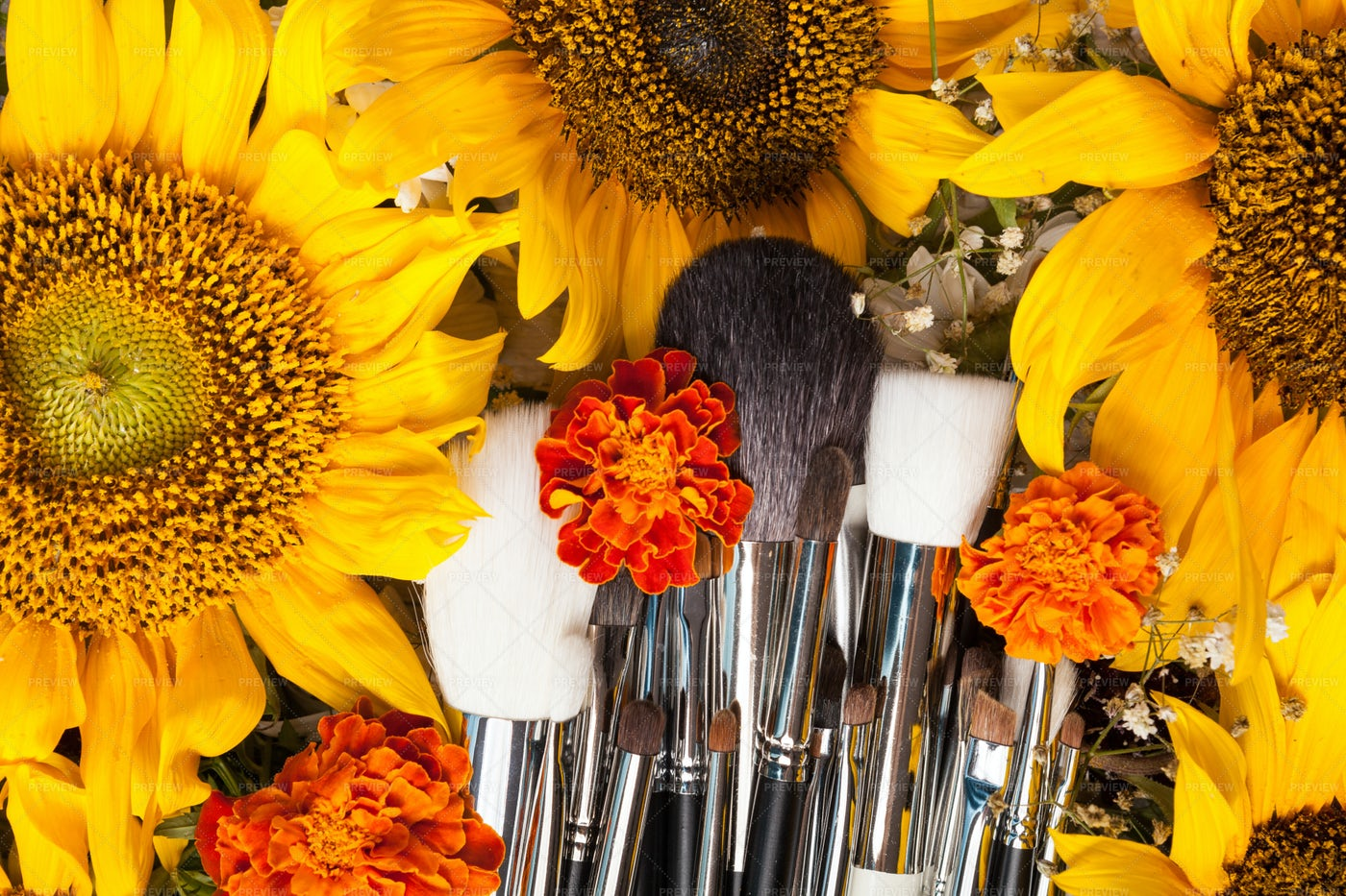 Flowers And Makeup Brushes: Stock Photos