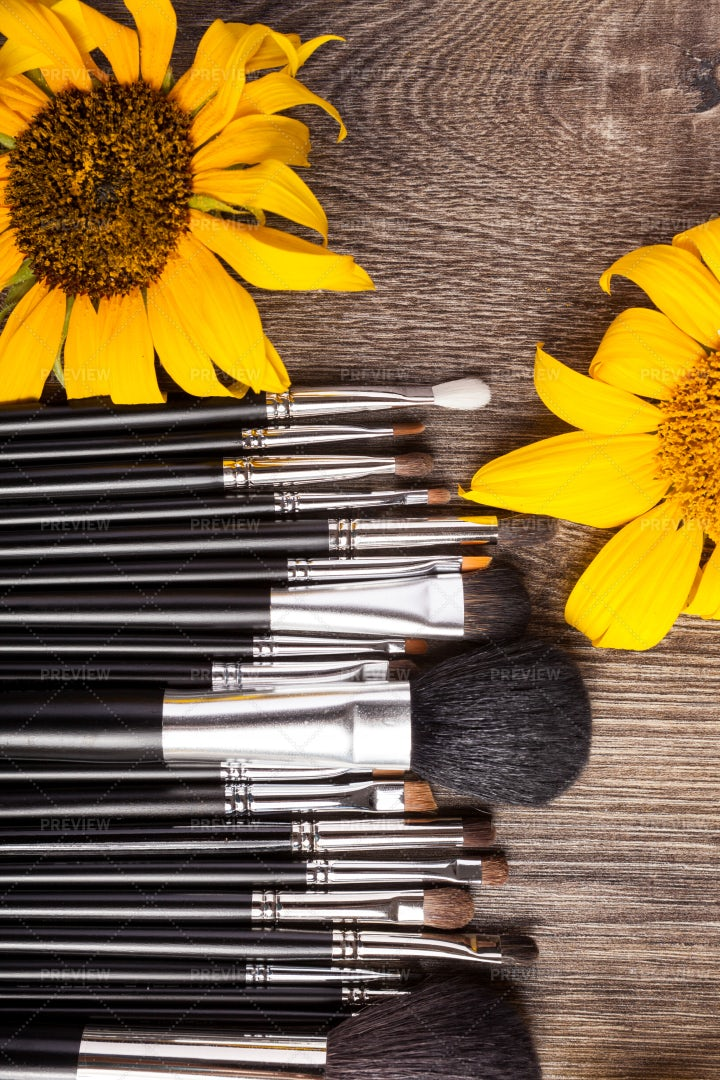 Professional Brushes And Sunflowers: Stock Photos