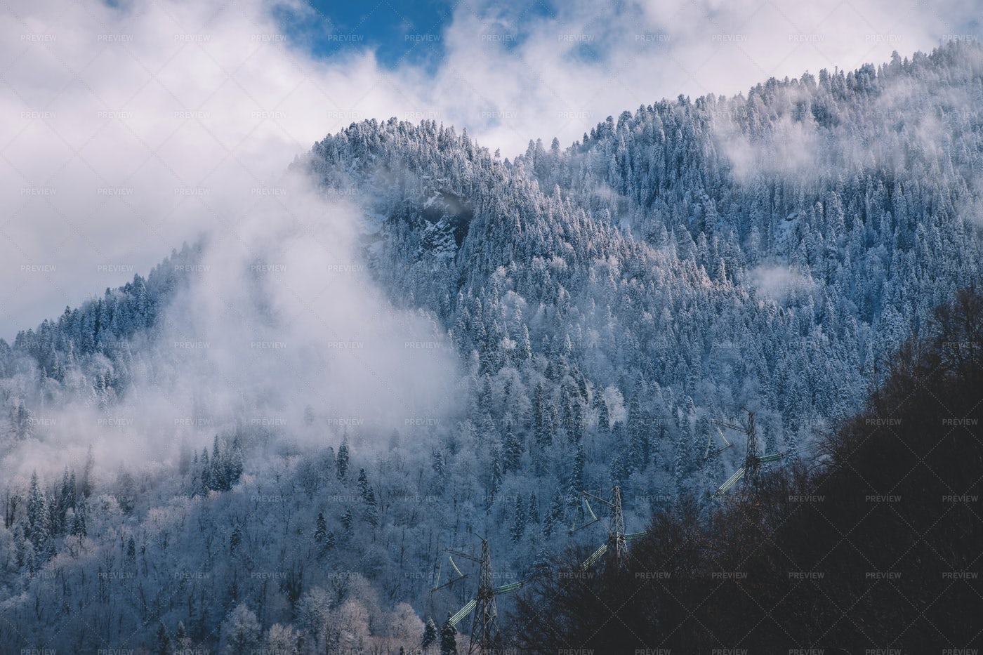 Snowy Mountain Forest And Clouds: Stock Photos