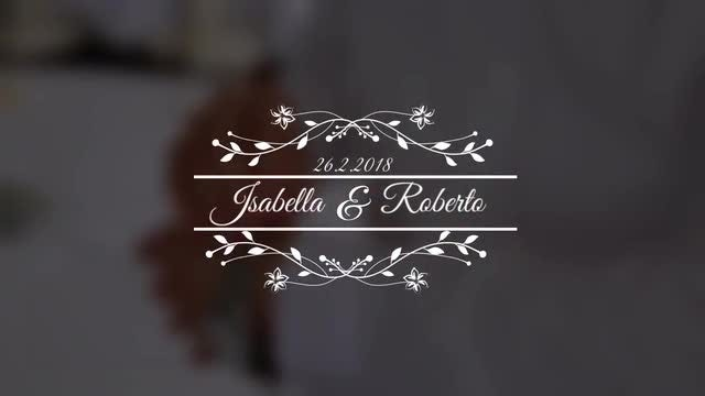 Wedding Titles V5: Premiere Pro Templates