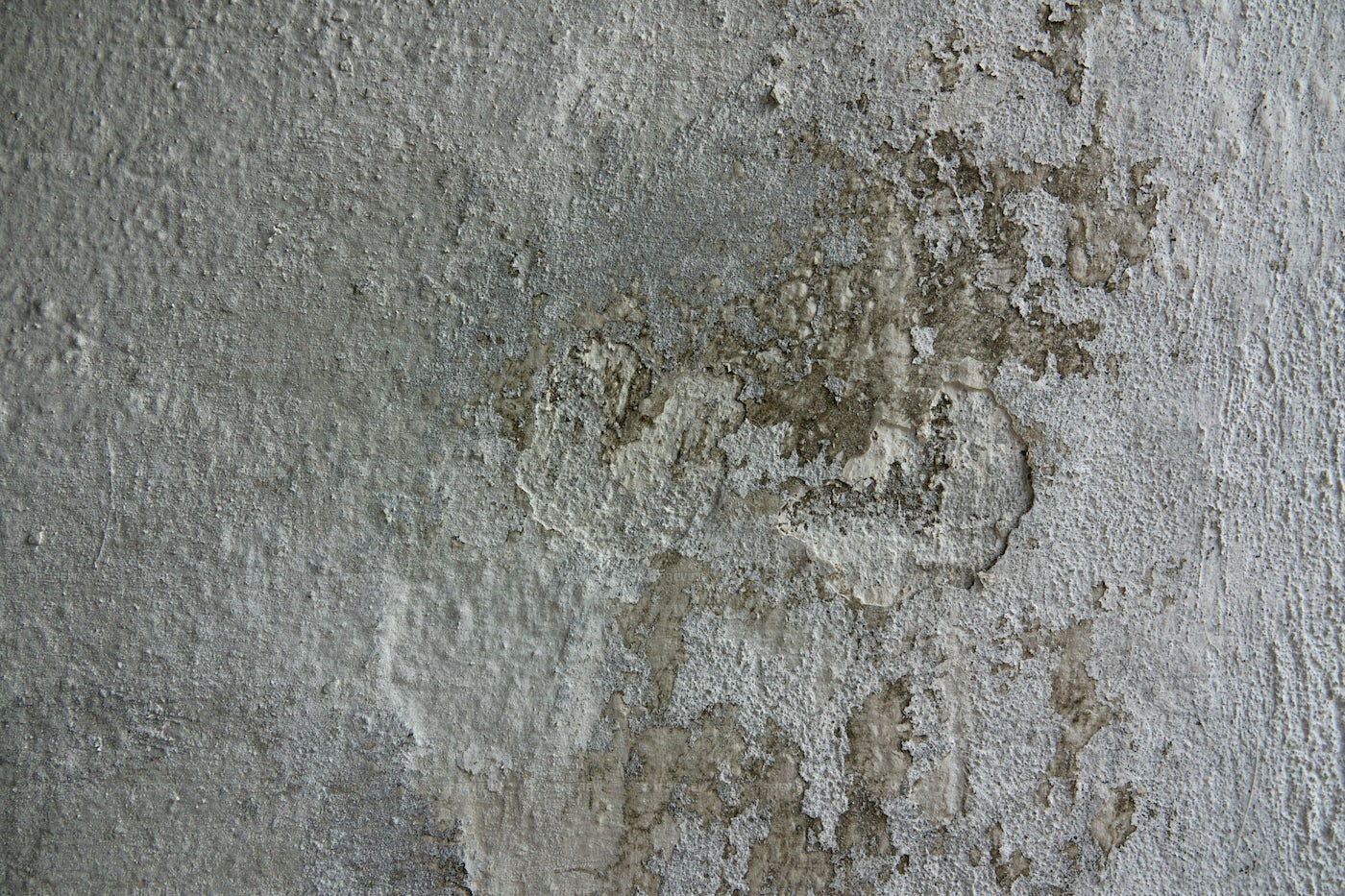 Texture Of A Ragged White Wall: Stock Photos