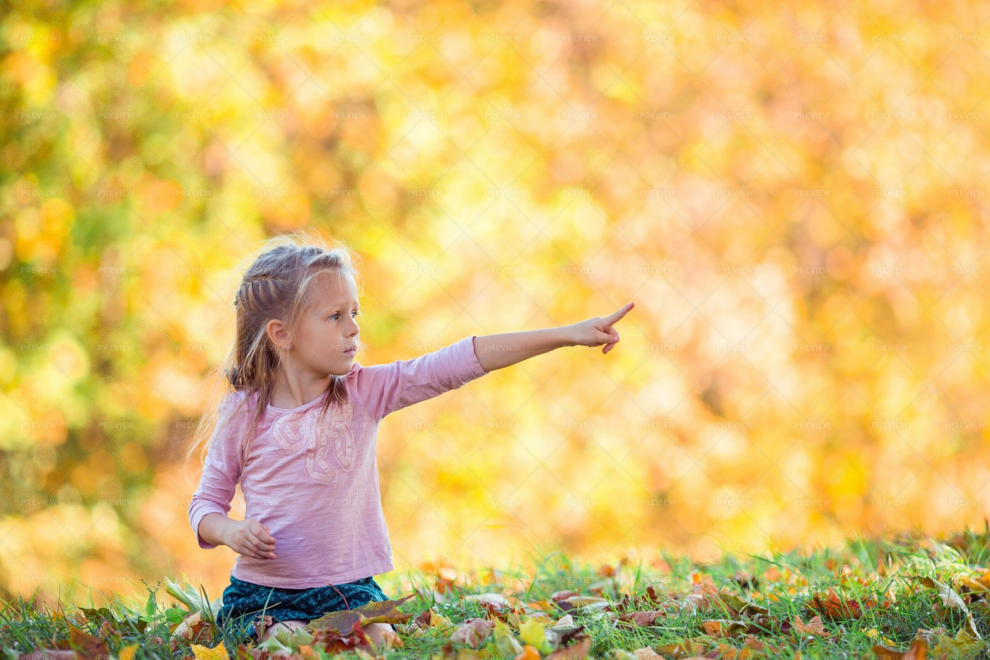 Pointing To The Trees: Stock Photos