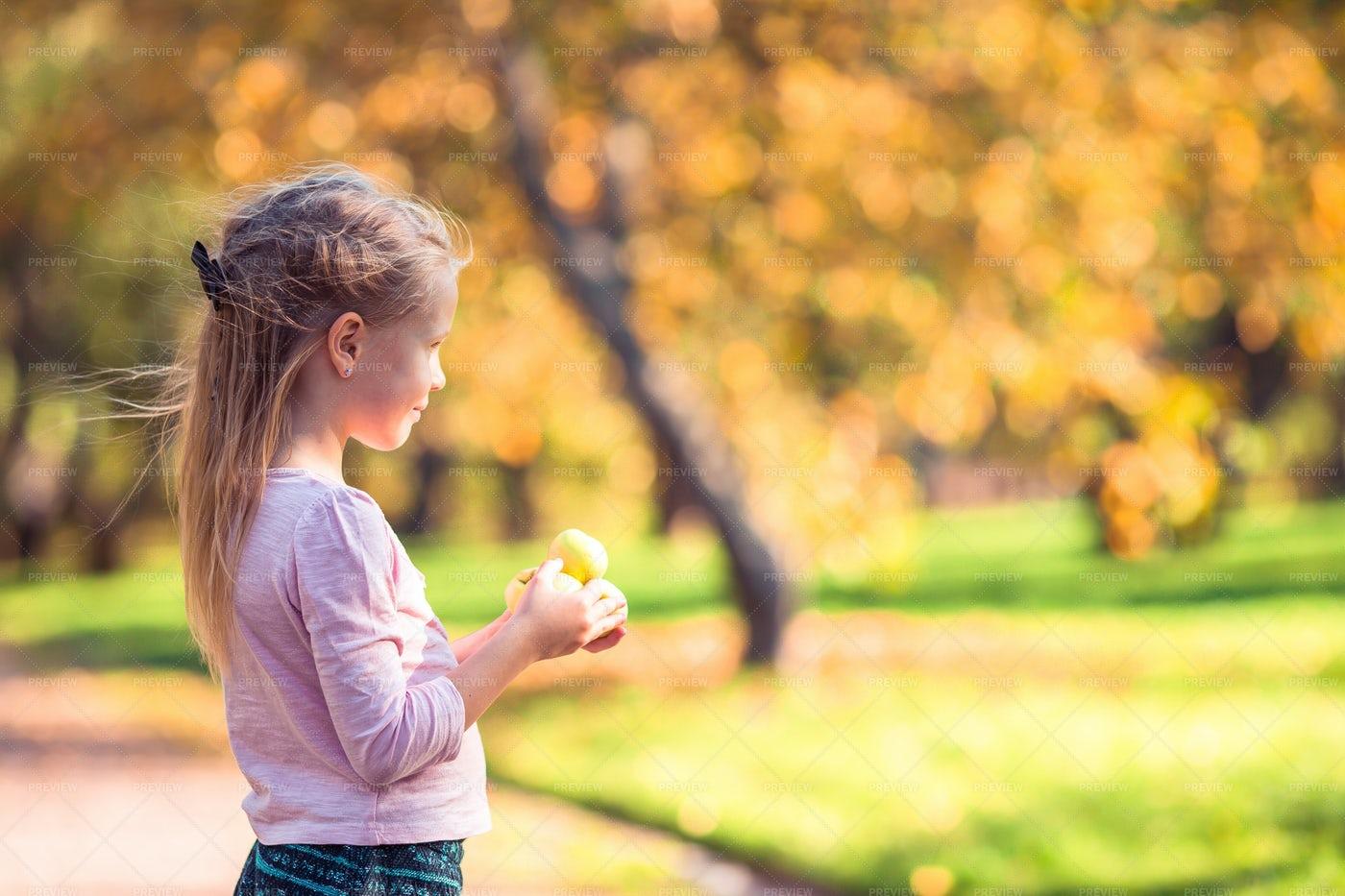 Child Holding Yellow Apples: Stock Photos