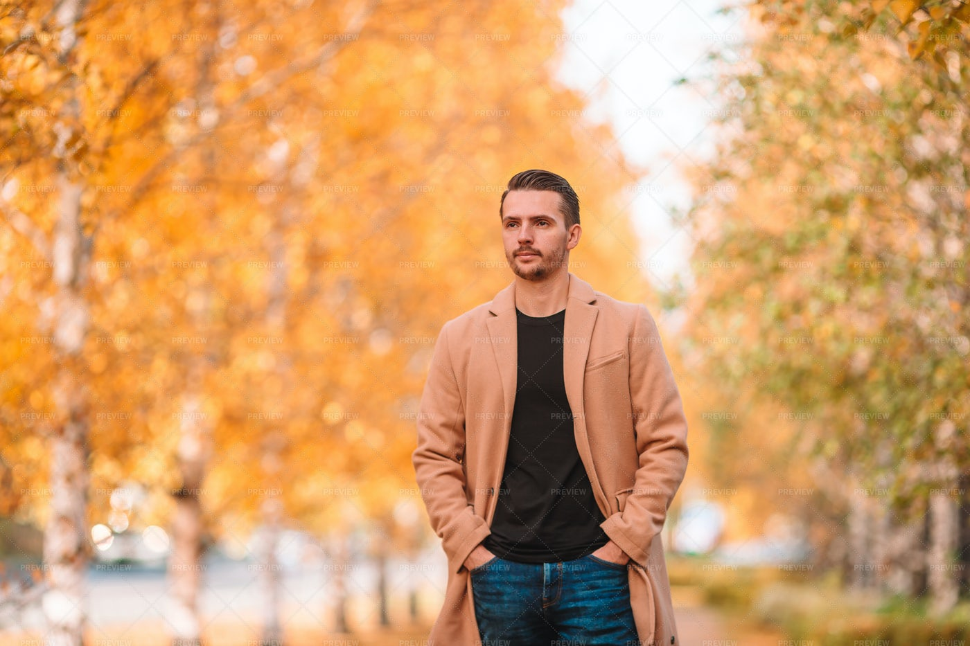 Strolling During Autumn: Stock Photos
