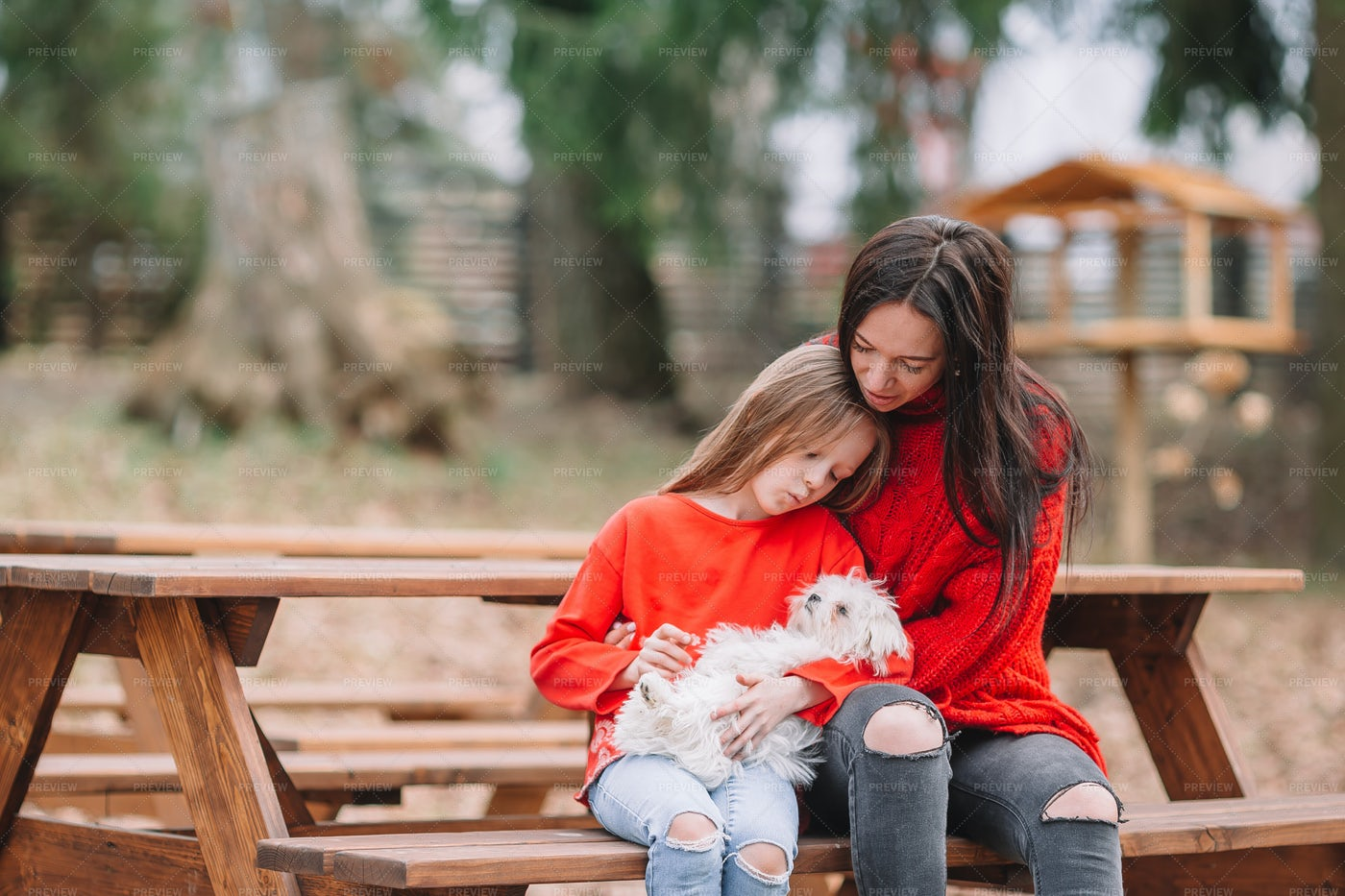 Girl And Mother With Their Dog: Stock Photos