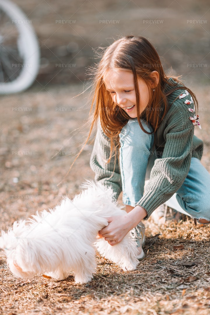 Girl Playing With Her Puppy: Stock Photos