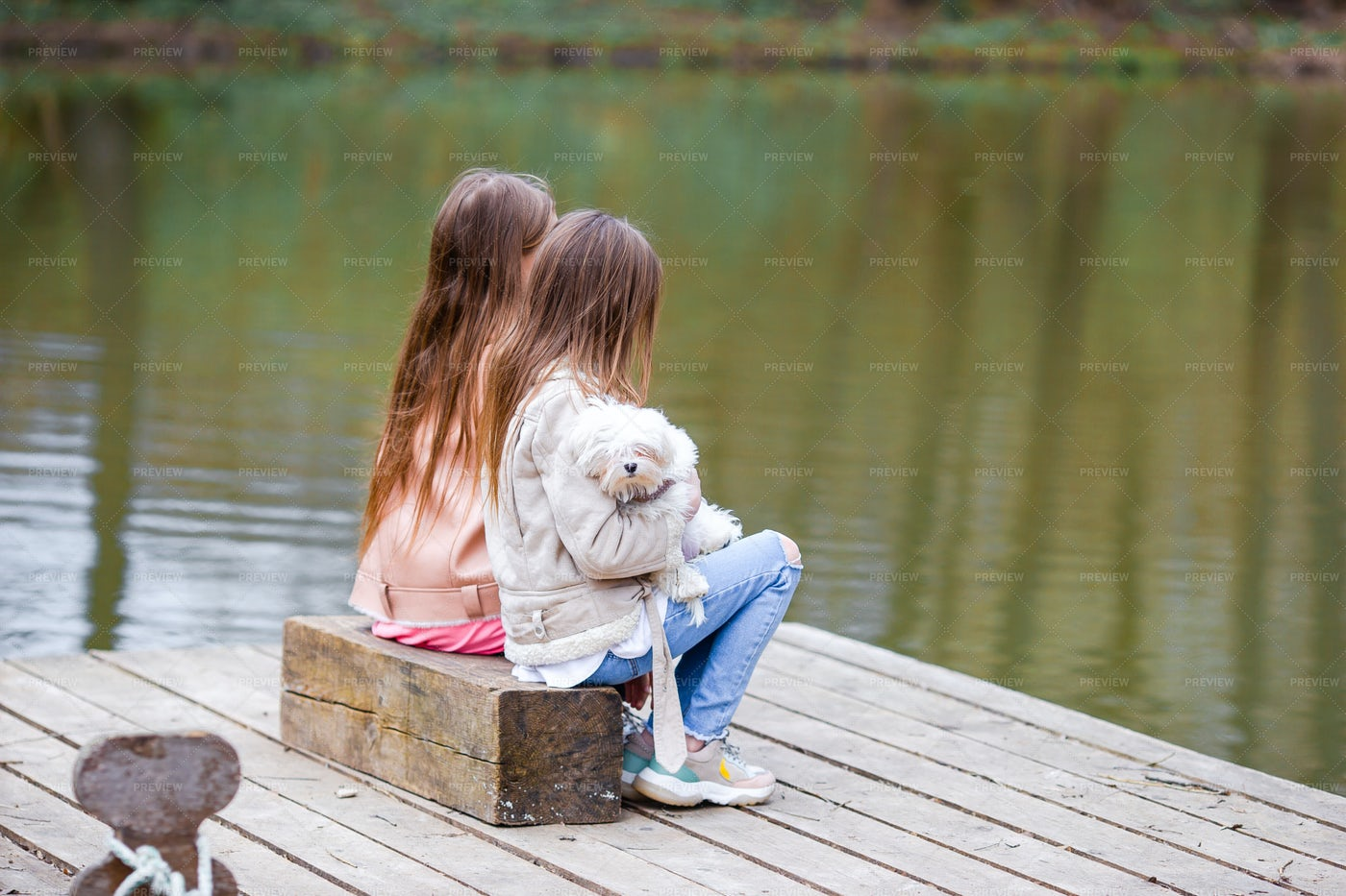 Sitting On A Dock With Puppy: Stock Photos